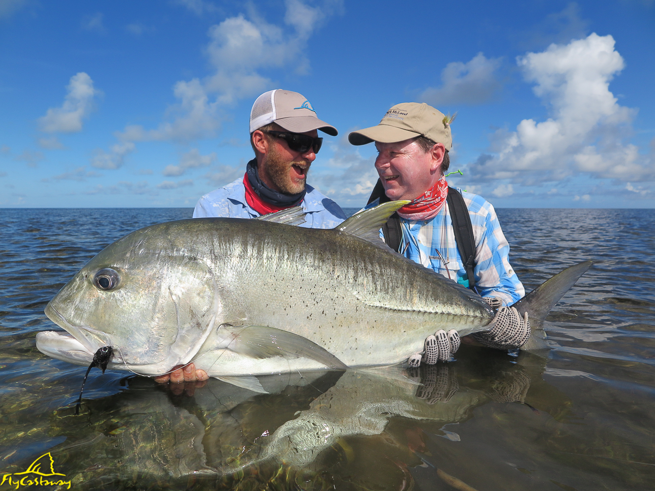 Featured Image - Providence Atoll: 2017 Head Guide Report
