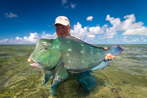 Fly Fishing for Bumphead Parrotfish in Seychelles