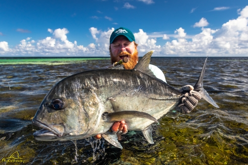 Fly fishing for Giant Trevally in Seychelles