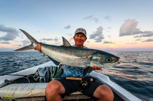 Milkfish caught on fly on Providence Atoll in Seychelles