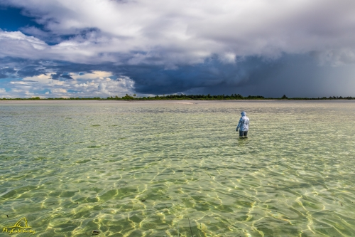 Fly fishing the beautiful flats of Providence Atoll in Seychelles